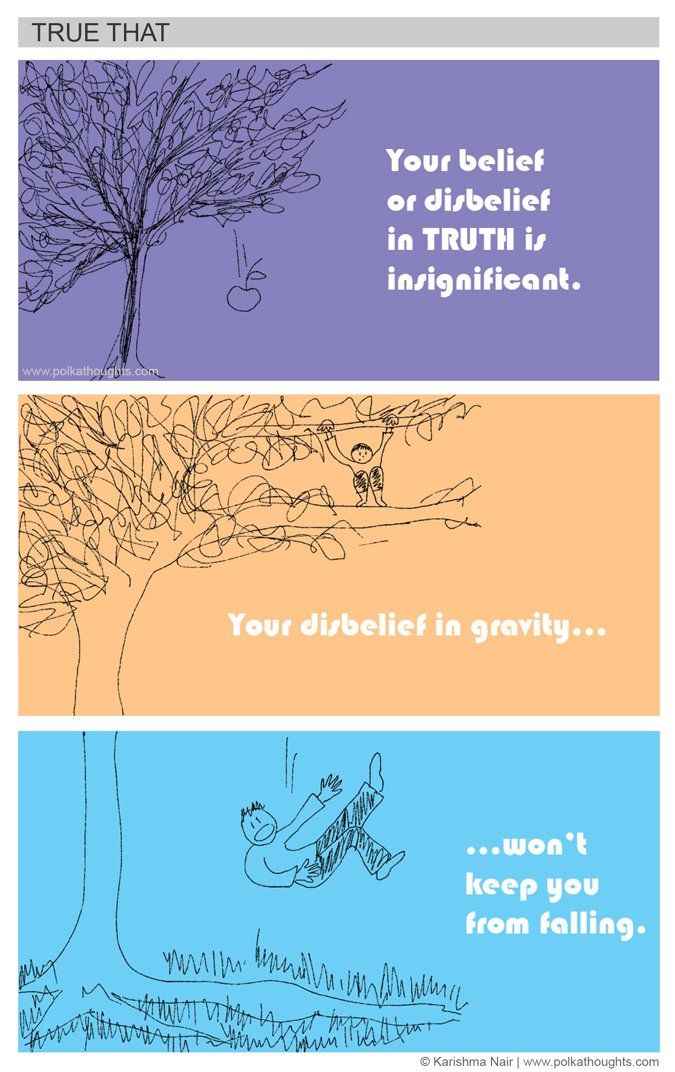 Truth vs Belief: Do you believe in Gravity? polkathoughts comics