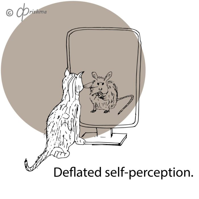 The cat looks into the mirror and sees the refection of a mouse. Deflated self-image.