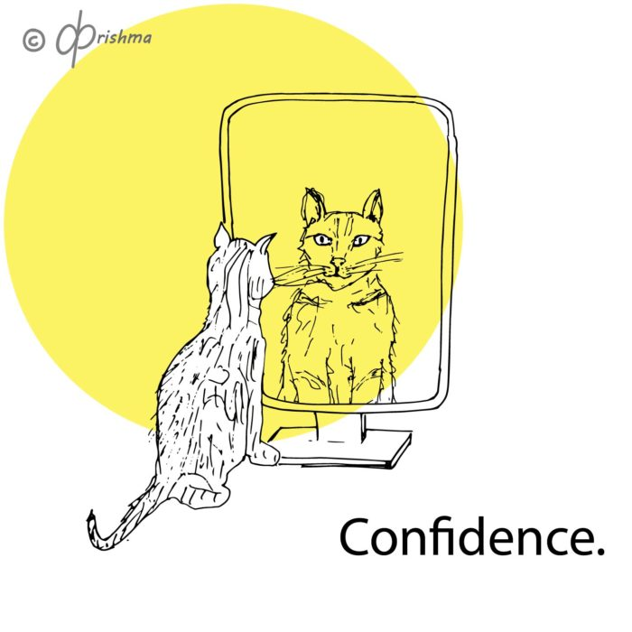 The cat looks into the mirror and sees its own reflection. Confidence.